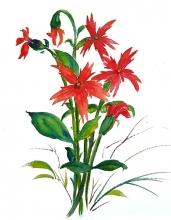 App Flowers